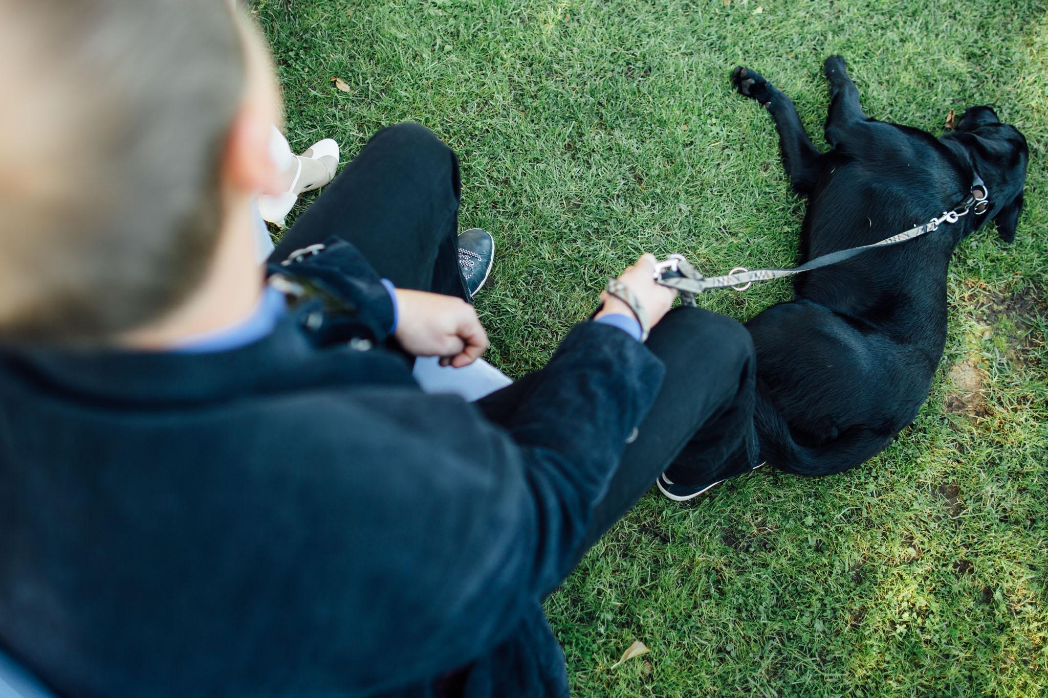 hochzeitsreportage-brandenburg-fotograf-hund