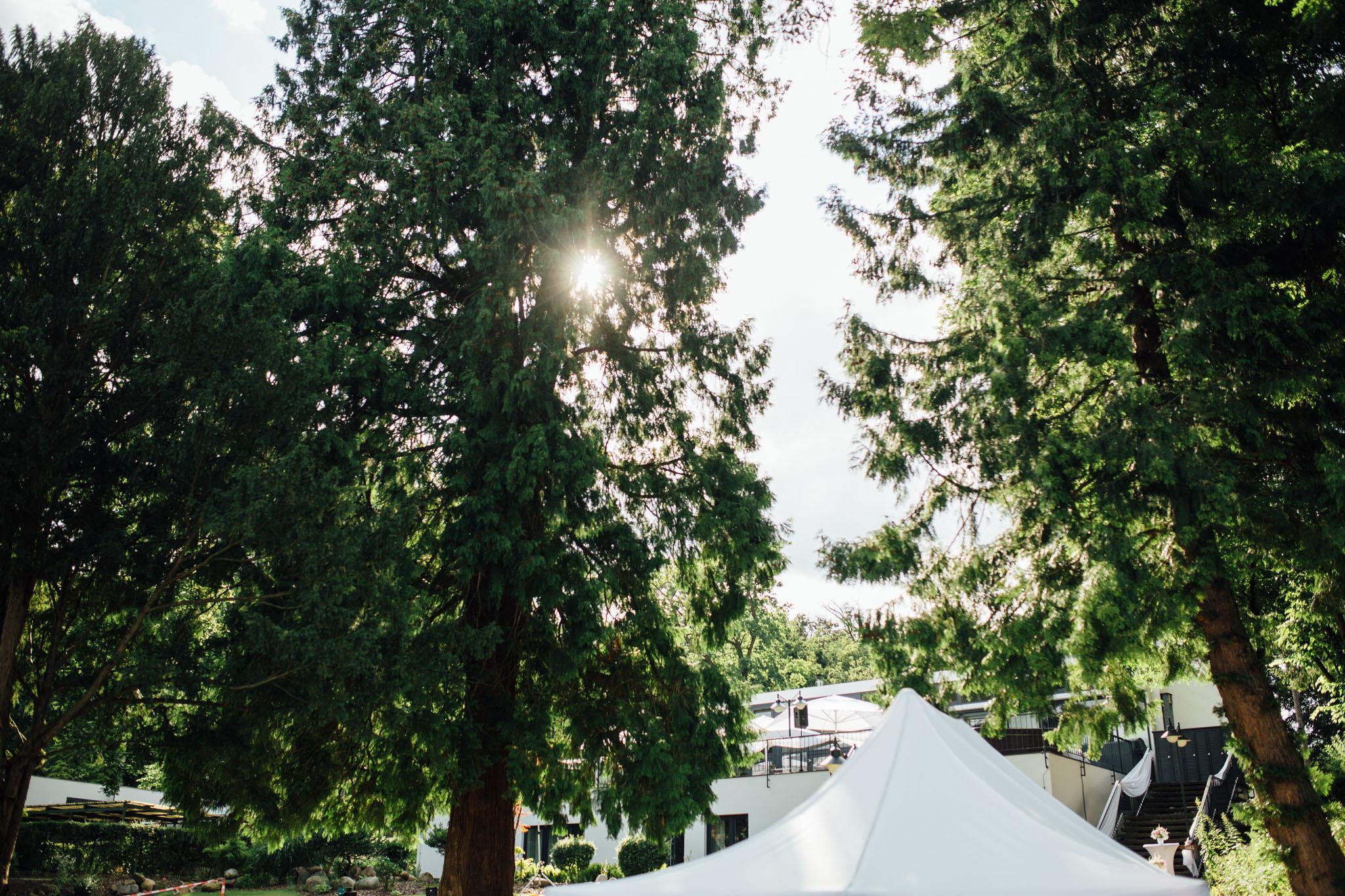 hochzeitsreportage-grün-sonne-partyzelt